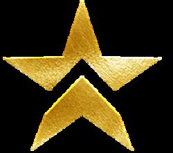 Gold Mining Members