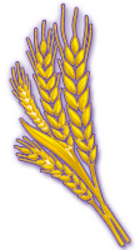 wheat-token