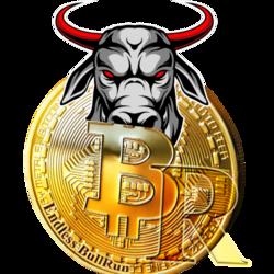 bull-run-token