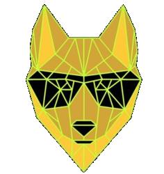 Dingo Token