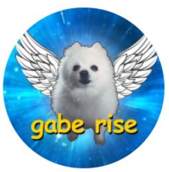 GabeRise