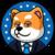 president doge  (PRESIDENTDOGE)