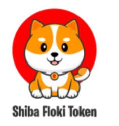 Shiba Floki