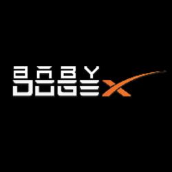 BabyDogeX