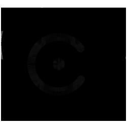 cryptum logo (small)
