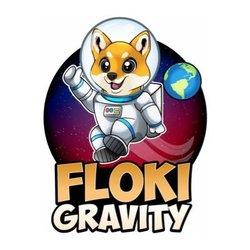 FlokiGravity
