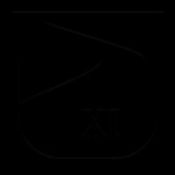 Prime-XI
