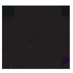 granitecoin  (GRN)