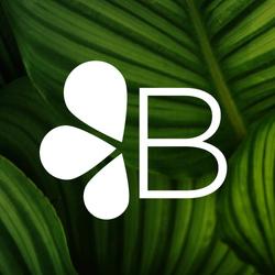 bloomx  (BX8)