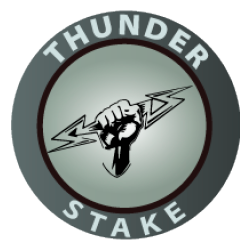 thunderstake logo