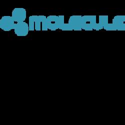 molecule ICO logo (small)