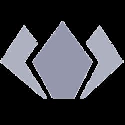 ethfinex voting tokens  (EVT)