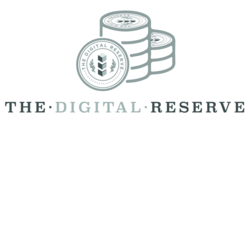 the digital reserve logo (small)
