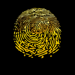 fingerprint  (FGP)