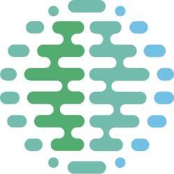 brain space logo (small)
