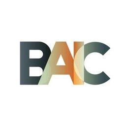 baic  (BAIC)