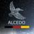 alcedo ICO