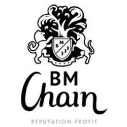 bmchain-token