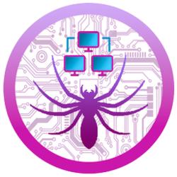 spider vps  (SPDR)