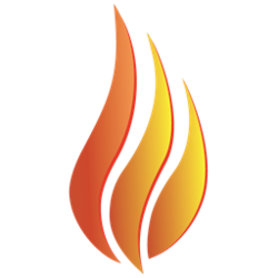 The Burn Token
