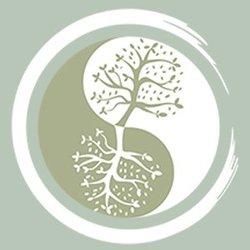 Логотип 360 Tribe (TRIBE) в png