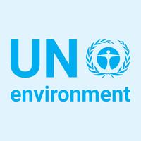 UN Environment profile picture