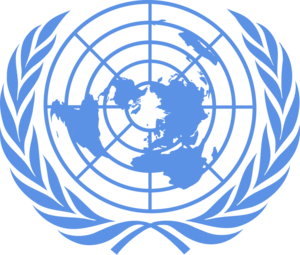 United Nations profile picture