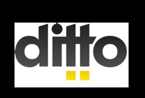 ditto profile picture