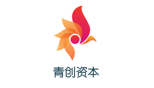 QingChuang Capital profile picture