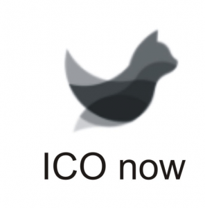 ICO NOW profile picture