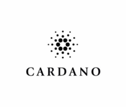 eToro's Beginner Guide to Cardano