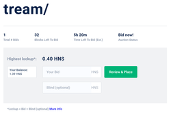 How to Bid on a Handshake Name Auction using Namebase