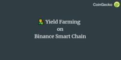 Yield Farming on Binance Smart Chain (BSC)