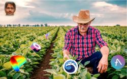Yield Farming on Polygon (MATIC)