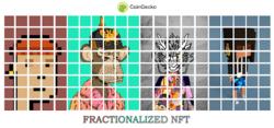 Fractionalized NFT