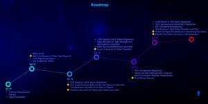 Dreamteam roadmap