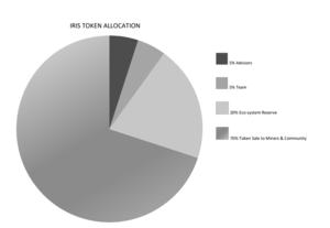 Token allocation